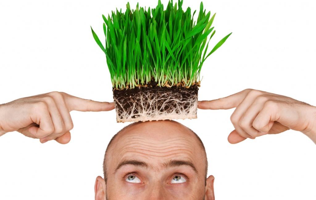 Тонкие волосы слабые корни